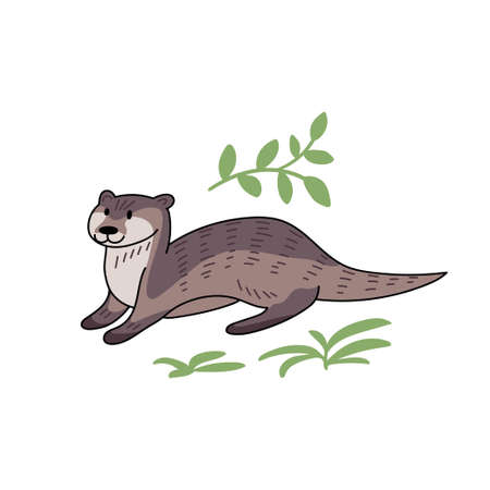 Hand drawn vector otter. Cute doodle illustration of Lutra lutra with plants