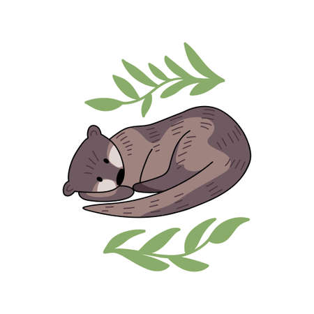 Hand drawn vector set of otters. Cute doodle illustration of Lutra lutra with plants