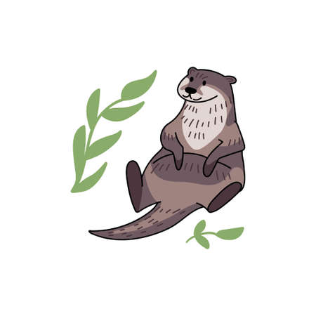 Hand drawn vector otter. Cute doodle illustration of Lutra lutra with plants water drops.