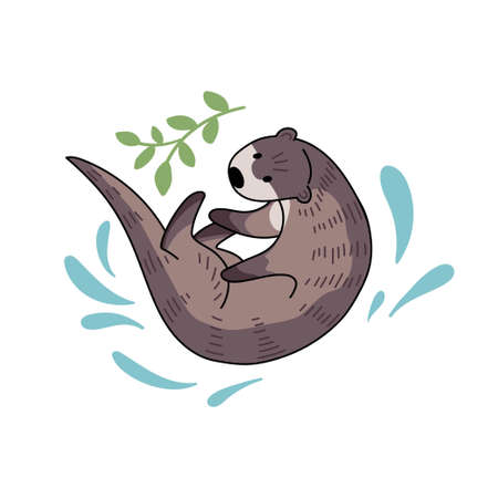 Hand drawn vector otter. Cute doodle illustration of Lutra lutra with plants and water drops.