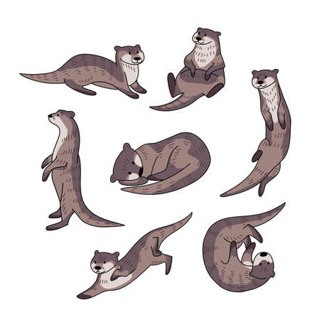 Hand drawn vector set of otters. Cute doodle illustration of Lutra lutra in different poses.
