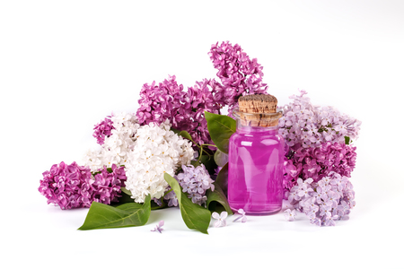 Glass bottle of lilac oil and the blooming branches of lilac on a white background.