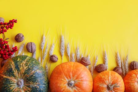 Yellow autumn background. Autumn harvest festival.