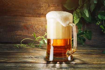 A glass of fresh beer and green hops on a wooden table. Stock Photo