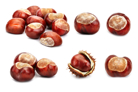 Set of chestnuts on a white background. An isolated object.
