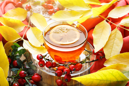 The table, decorated with autumn leaves, berries and fresh tea. Autumn. Autumn background. Stock Photo