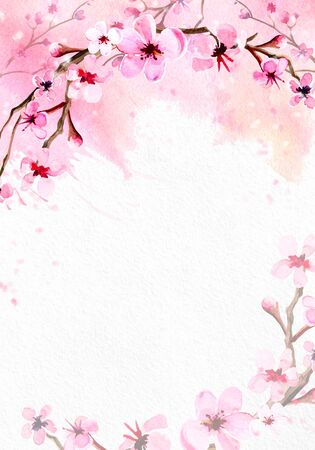 Cherry blossom on pink watercolor background.