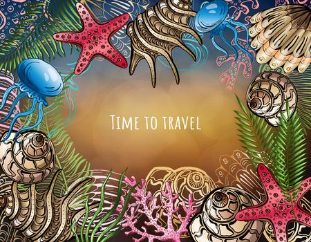 Composition of seashells, starfish, jellyfish. Underwater world. Sea background. Stockfoto - 101011565