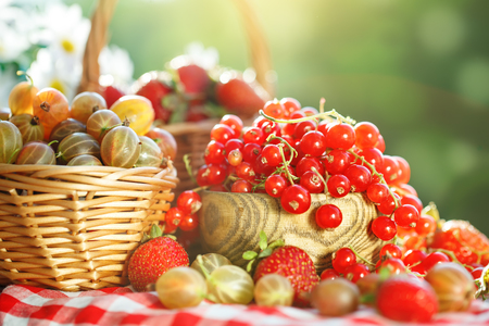 Ripe berries - red currants, strawberries, gooseberries on a wooden table in the summer garden. Harvest. Summer still life. Stock Photo