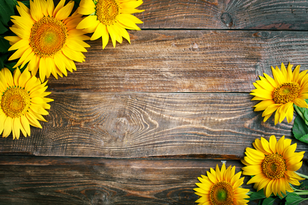 Beautiful sunflowers on a wooden table. View from above. Background with copy space. Stok Fotoğraf