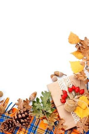 Happy Thanksgiving Day background. White background decorated with Pumpkins, Maize, fruits and autumn leaves. Autumn festival. Harvest festival. The view from the top. Vertical.