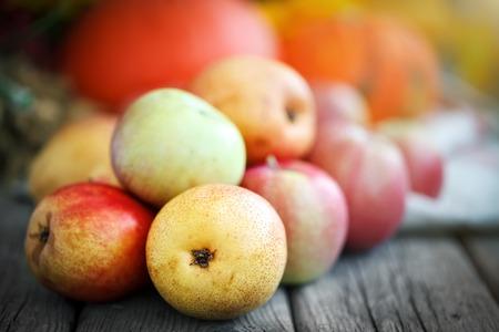 Fresh harvest of apples. Happy Thanksgiving Day. Harvest festival. Autumn background.