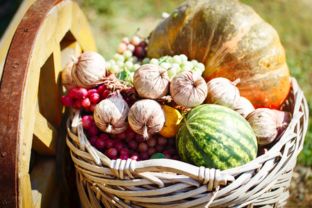 Different vegetables and fruits in a big basket. Autumn harvest. Happy Thanksgiving Day. Harvest festival.