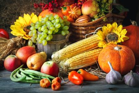 Happy Thanksgiving Day background, wooden table decorated with Pumpkins, Maize, fruits and autumn leaves. Autumn festival. Harvest festival. Selective focus. Horizontal.