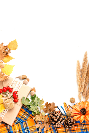 Happy Thanksgiving Day background. White background decorated with Pumpkins, Maize, fruits and autumn leaves. Autumn festival. Harvest festival. The view from the top. Vertical Background with copy space.