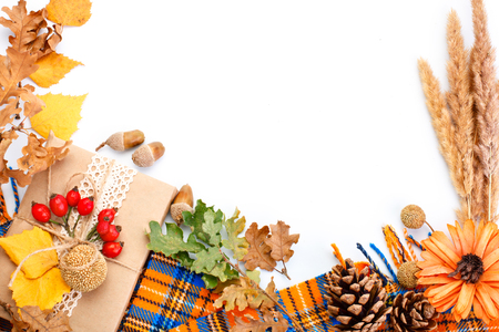 Happy Thanksgiving Day background. White background decorated with Pumpkins, Maize, fruits and autumn leaves. Autumn festival. Harvest festival. The view from the top. Horizontal. Background with copy space. Stock Photo