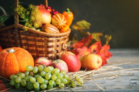 Happy Thanksgiving Day background, wooden table decorated with Pumpkins, Maize, fruits and autumn leaves. Autumn festival. Harvest festival. Selective focus. Horizontal. Background with copy space.