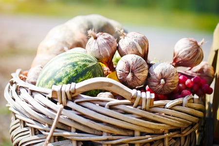 Different vegetables and fruits in a big basket. Autumn harvest. Happy Thanksgiving Day. Harvest festival. Autumn background.