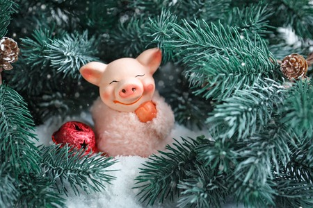 Merry Christmas and happy New year. Toy pig in the branches of spruce. Background with copy space. Selective focus.