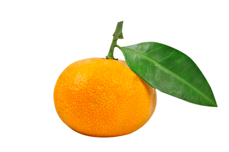 Tangerine or clementine with green leaf isolated on white background. Isolated object.