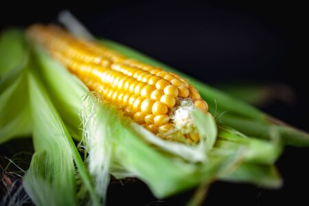 Fresh corn on cobs on wooden table, closeup. Selective focus.