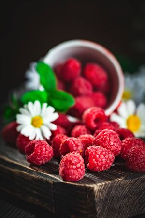 Raspberry in a red cup with chamomile and leaves on a dark background. Summer and healthy food concept. Selective focus.