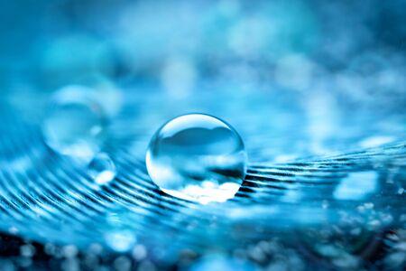 Schöne transparente Wassertropfen oder Regenwasser auf weichem Hintergrund. Makrofotografie. Desktop-Hintergrund. Selektiver Fokus.
