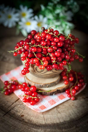 Fresh red currants in plate on dark rustic wooden table. Background with copy space. Selective focus. Vertical.