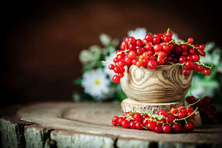 Fresh red currants in plate on dark rustic wooden table. Background with copy space. Selective focus. Horizontal. Archivio Fotografico - 150712417