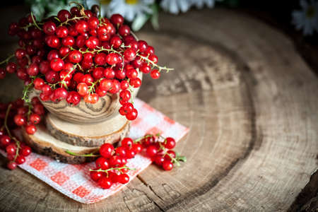 Fresh red currants in plate on dark rustic wooden table. Background with copy space. Selective focus. Horizontal. Banque d'images - 150712366