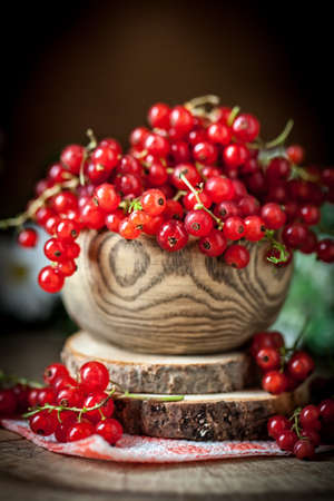 Fresh red currants in plate on dark rustic wooden table. Background with copy space. Selective focus. Archivio Fotografico - 151050275