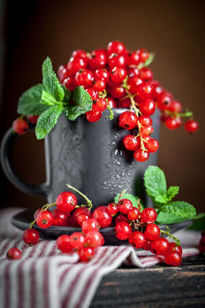 Fresh red currants in a Cup on a dark rustic wooden table. Background with space for copying. Selective focus. Reklamní fotografie