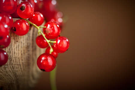Fresh red currants in plate on dark rustic wooden table. Background with copy space. Selective focus.