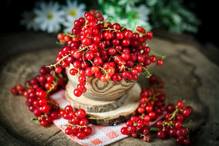 Fresh red currants in plate on dark rustic wooden table. Background with copy space. Selective focus. Archivio Fotografico - 151409500