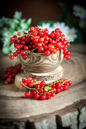 Fresh red currants in plate on dark rustic wooden table. Background with copy space. Selective focus. Banque d'images - 151872009