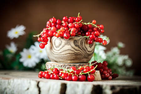 Fresh red currants in plate on dark rustic wooden table. Background with copy space. Selective focus. 免版税图像 - 151872011