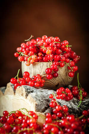 Fresh red currants on dark rustic wooden table. Background with copy space. Selective focus. Reklamní fotografie