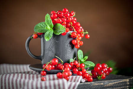Fresh red currants in a Cup on a dark rustic wooden table. Background with space for copying. Selective focus. Archivio Fotografico