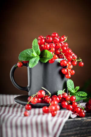 Fresh red currants on dark rustic wooden table. Background with copy space. Selective focus. Archivio Fotografico
