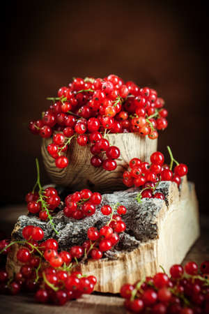 Fresh red currants on dark rustic wooden table. Background with copy space. Selective focus. Imagens
