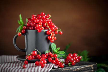 Fresh red currants in a Cup on a dark rustic wooden table. Background with space for copying. Selective focus. Reklamní fotografie - 166277332
