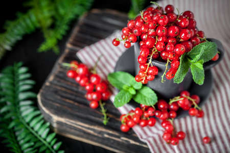Fresh red currants in a Cup on a dark rustic wooden table. Background with space for copying. Selective focus. Reklamní fotografie - 166277625
