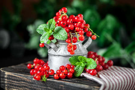 Fresh red currants in a Cup on a dark rustic wooden table. Background with space for copying. Selective focus. 스톡 콘텐츠