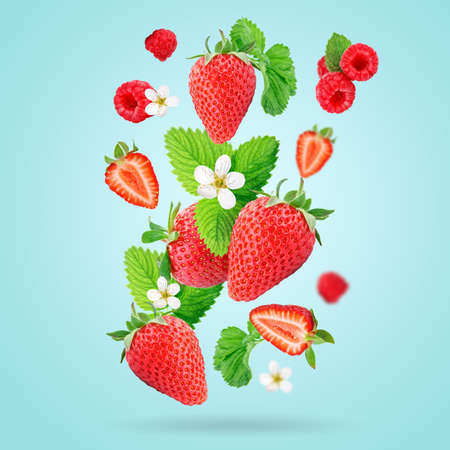 Strawberry berries levitating on a blue background. Strawberry background.