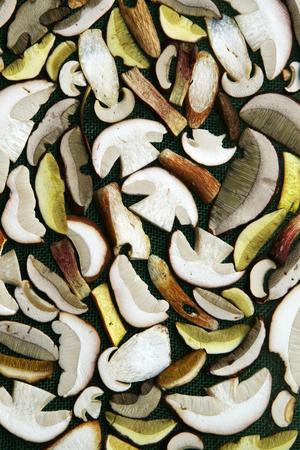 sliced  various edible mushrooms photo