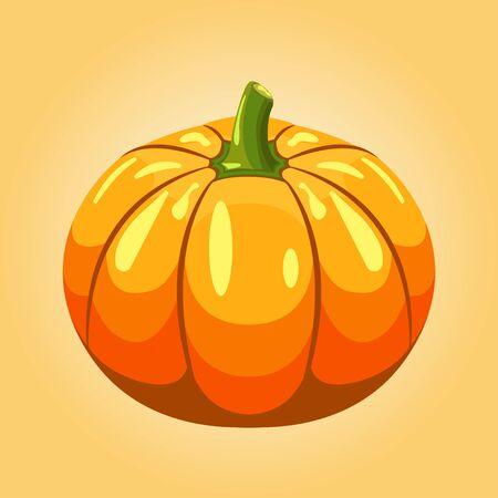 pumpkin isolated vector illustration