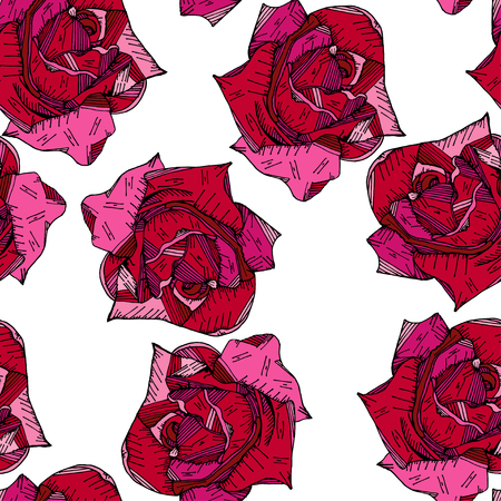red pink rose floral hand drawn pattern background vector
