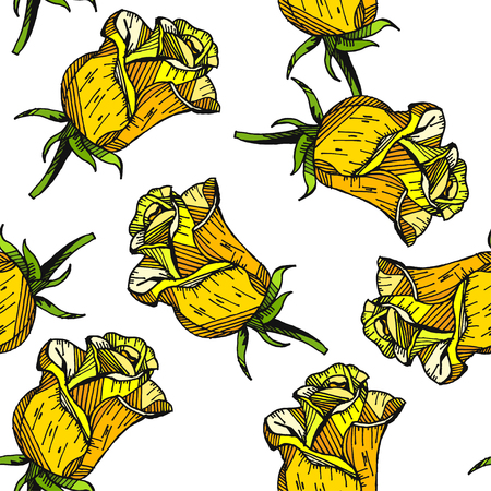 yellow rose floral hand drawn pattern background vector Ilustrace