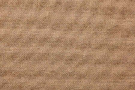 Tan Fabric Background
