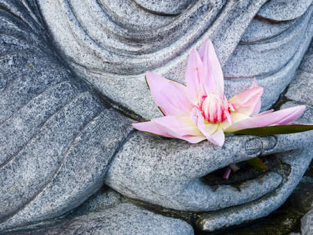 Buddha Image Statue Hand Hold Pink Lotus Stock Photo - 10097676